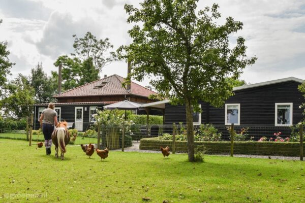 Groepsaccommodatie Staphorst - 14 personen - Overijssel - Staphorst afbeelding