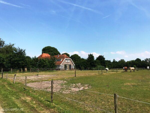 Vakantieboerderij Schoorl - 15 personen - Noord-Holland - Schoorl afbeelding