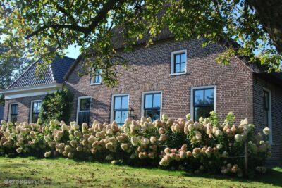 Vakantieboerderij Ruinerwold - 25 personen - Drenthe - Ruinerwold afbeelding
