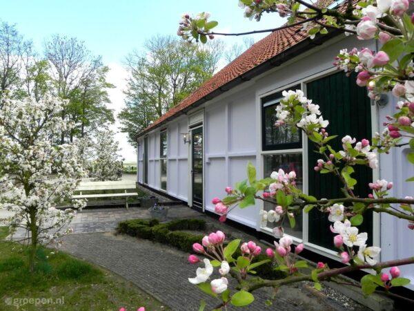 Groepsaccommodatie Blokzijl - 34 personen - Overijssel - Blokzijl afbeelding