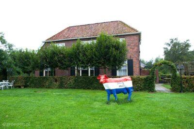 Vakantieboerderij Eibergen - 12 personen - Gelderland - Eibergen afbeelding