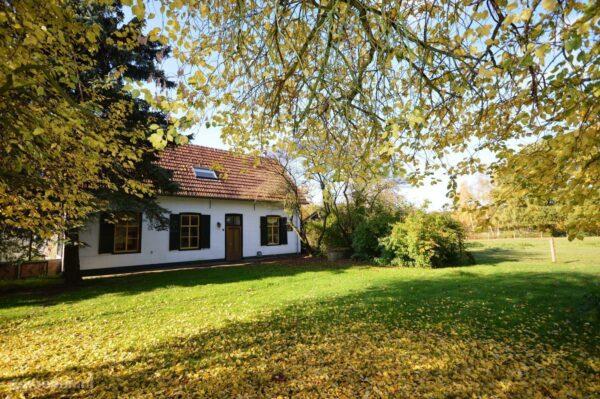 Vakantieboerderij Holthees - 10 personen - Noord-Brabant - Holthees afbeelding