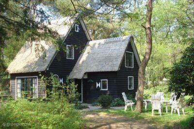 Vakantiehuis Norg - 8 personen - Drenthe - Norg afbeelding