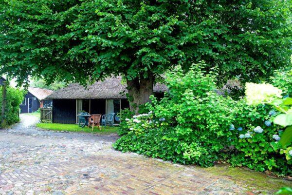 Vakantieboerderij Norg - 12 personen - Drenthe - Norg afbeelding