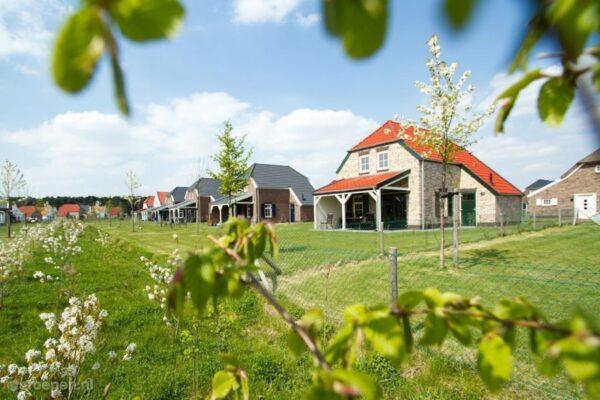 Vakantiehuis Roggel - 9 personen - Limburg - Roggel afbeelding