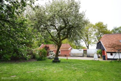 Vakantieboerderij Sellingen - 24 personen - Groningen - Sellingen afbeelding