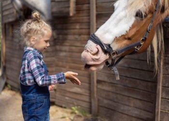 vriendenweekend op vakantieboerderij Gelderland
